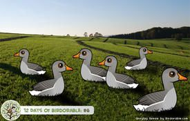 12 Days of Birdorable: Six Geese-a-Laying