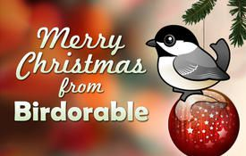 Merry Christmas from Birdorable
