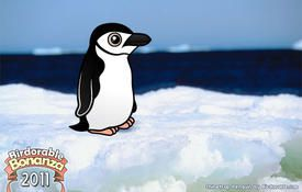 Bonanza Bird #15: Chinstrap Penguin