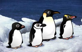 Penguin Awareness Day - Penguin Puzzle