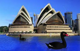 Black Swans, Flying Pigs, and Australia