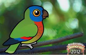 Bonanza Bird #3: St. Lucia Amazon