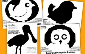 Cute Bird Halloween Pumpkin Patterns