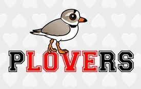 You Can't Spell PLOVERS without LOVE