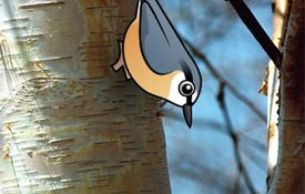 Birdorable #98: The Eurasian Nuthatch