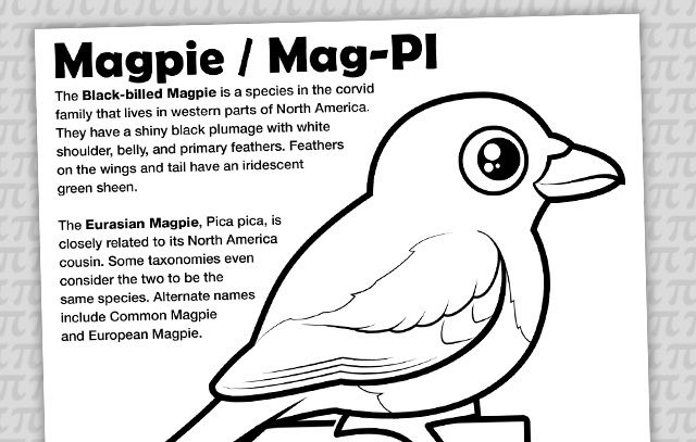 Mag PI Coloring Page with Birdorable Magpie for Pi Day