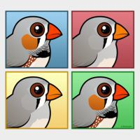 Four Color Zebra Finch