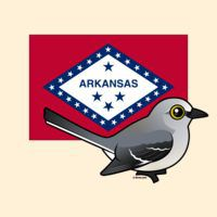 State Birdorable of Arkansas: Northern Mockingbird