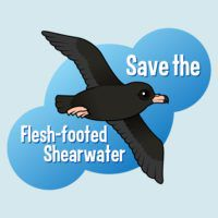 Save the Flesh-footed Shearwater