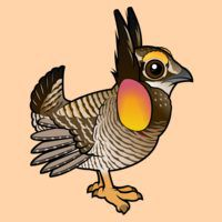 Cute Greater Prairie-Chicken