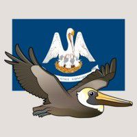 State Birdorable of Louisiana: Brown Pelican