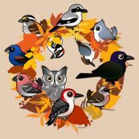 Autumn Wreath of North American Birds