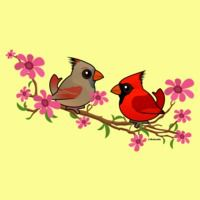 Northern Cardinals on Blossom Branch