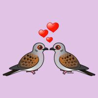 Two Turtle Doves in Love