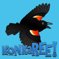 KonkaREE! Red-winged Blackbird
