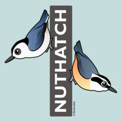 Nuthatch Fan