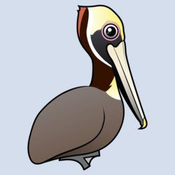 Birdorable Brown Pelican