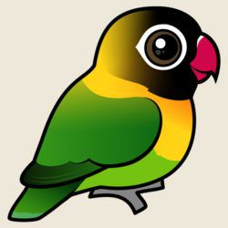 Birdorable Yellow-collared Lovebird
