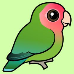 Birdorable Rosy-faced Lovebird