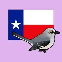 State Birdorable of Texas: Northern Mockingbird