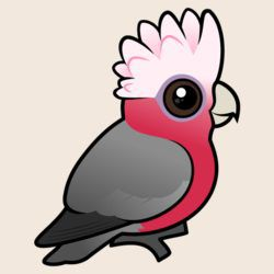 Birdorable Galah (crest up)