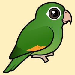 Birdorable Golden-winged Parakeet