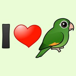 I Love Golden-winged Parakeets