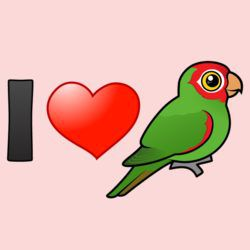I Love Red-masked Parakeets