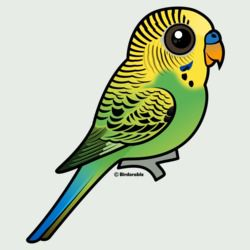 Customizable Green Budgie