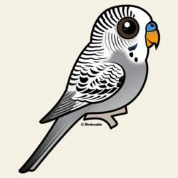 Birdorable Grey Budgie