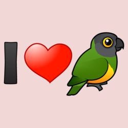 I Love Senegal Parrots