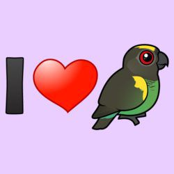 I Love Meyer's Parrots