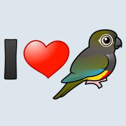 I Love Patagonian Conures