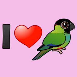 I Love Nanday Conures