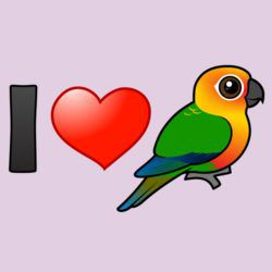 I Love Jenday Conures