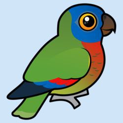 Birdorable Saint Lucia Parrot