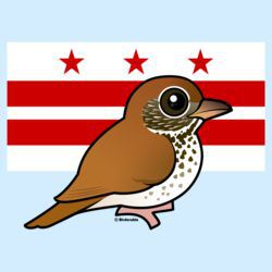 Official Birdorable of Washington, D.C.: Wood Thrush