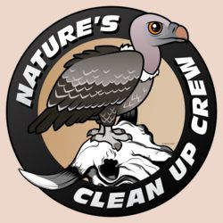 Nature's Clean Up Crew