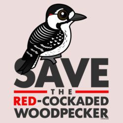 Save the Red-cockaded Woodpecker