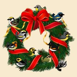 Birdorable Warblers Christmas Wreath