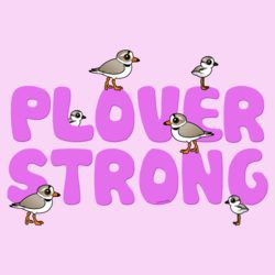 Plover Strong