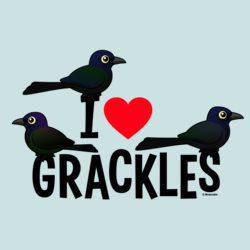 I Love Grackles