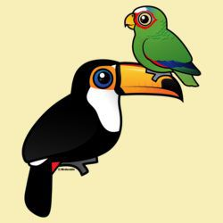 Toucan Tower