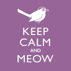 Keep Calm and Meow