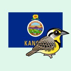 State Birdorable of Kansas: Western Meadowlark
