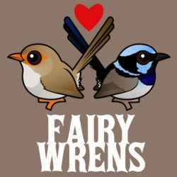 Fairywrens in Love