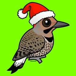Northern Flicker Santa Claus (yellow shafted)