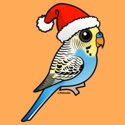 Blue & Yellow Santa Budgie