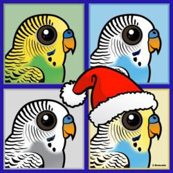Four Color Xmas Budgies