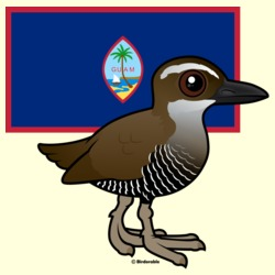 Guam Rail with Flag